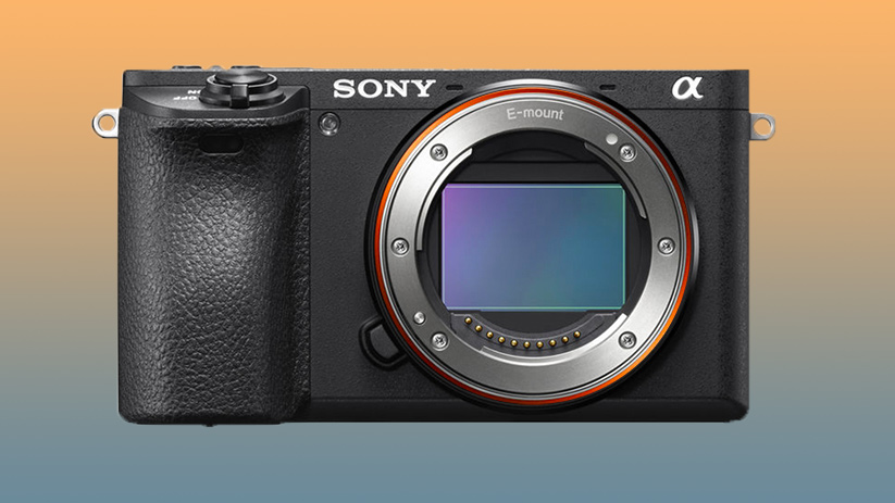 Sony a5/a6 – An a6600 Body with a7III Specs